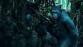 Gorilla Warfare: How <i>War for the Planet of the Apes</i> Mirrors U.S. History