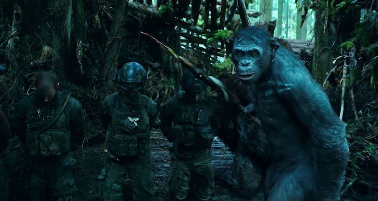 Gorilla Warfare: How War for the Planet of the Apes Mirrors U.S. History
